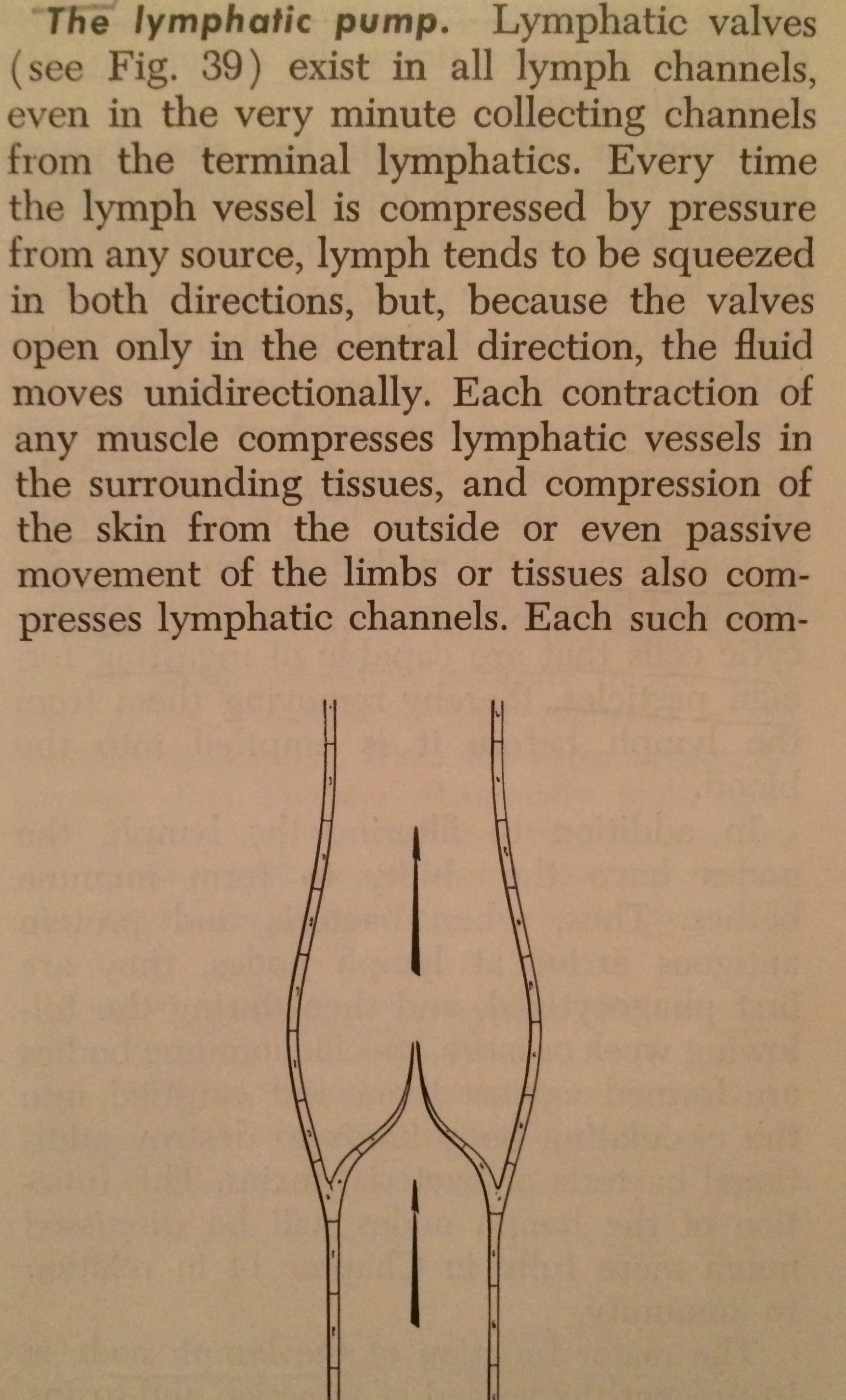 Text of Medical Physiology, 1961 2nd ed., p. 65